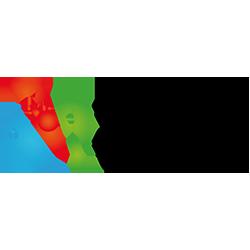 Logo club Saint dié
